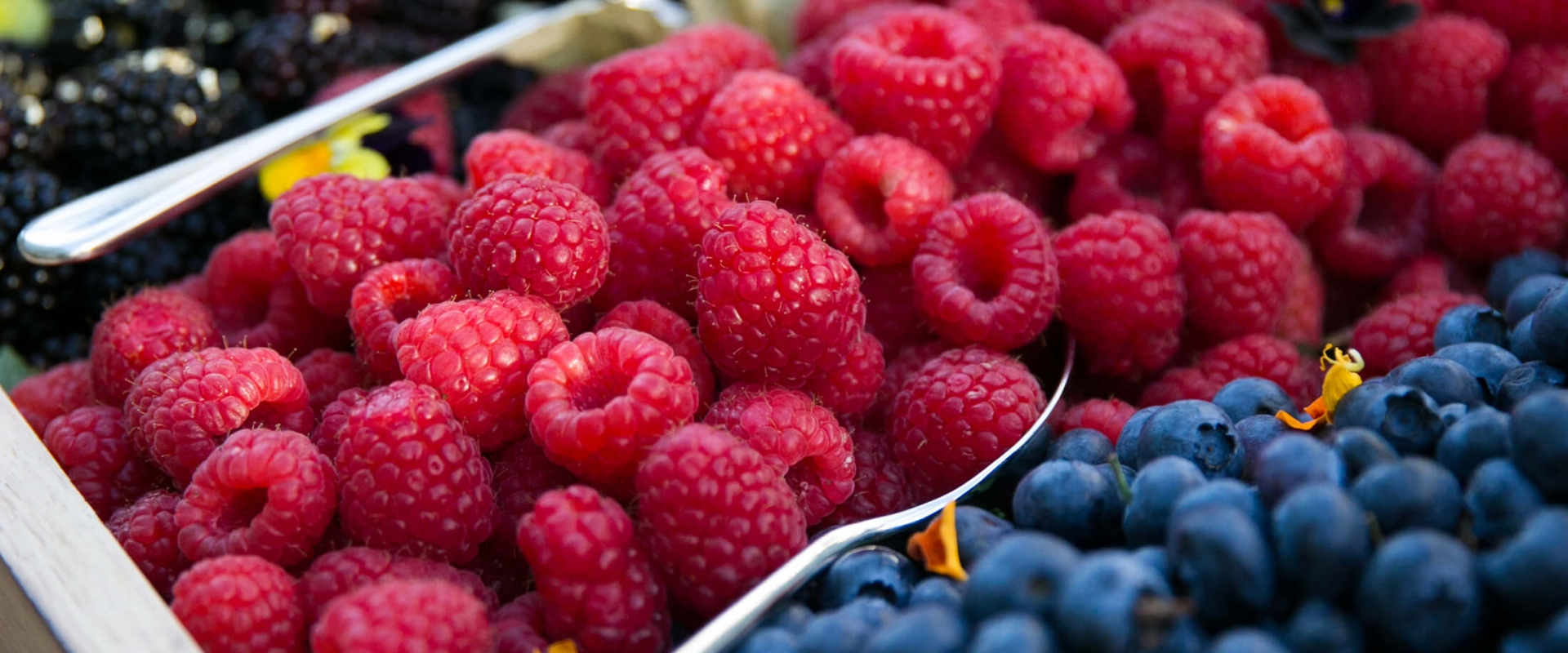 Fresh raspberries, blueberries & blackberries at Parq Vancouver