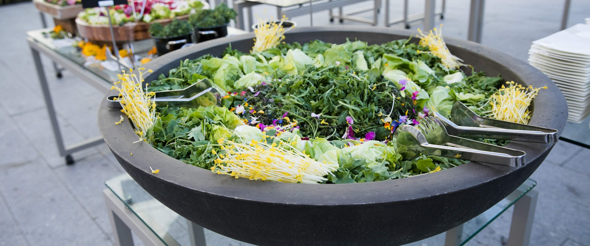 Giant bowl of beautiful green salad made with fresh ingredients