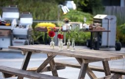 Flowers and plants in small glass vases on picnic table
