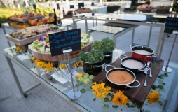 Beautifully prepared and presented salad bar at the park at Parq Vancouver